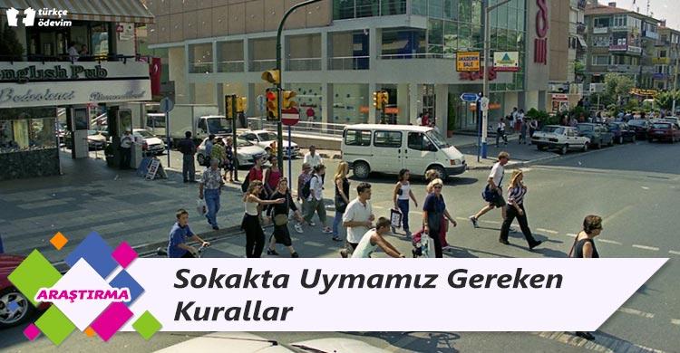 Sokakta Uymamız Gereken Kurallar