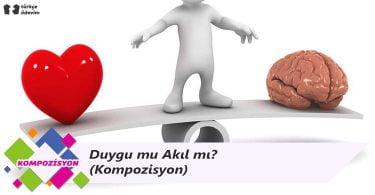 Duygu mu Akıl mı? - Kompozisyon