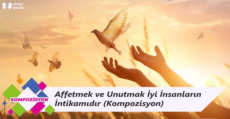 Affetmek ve Unutmak İyi İnsanların İntikamıdır - Kompozisyon
