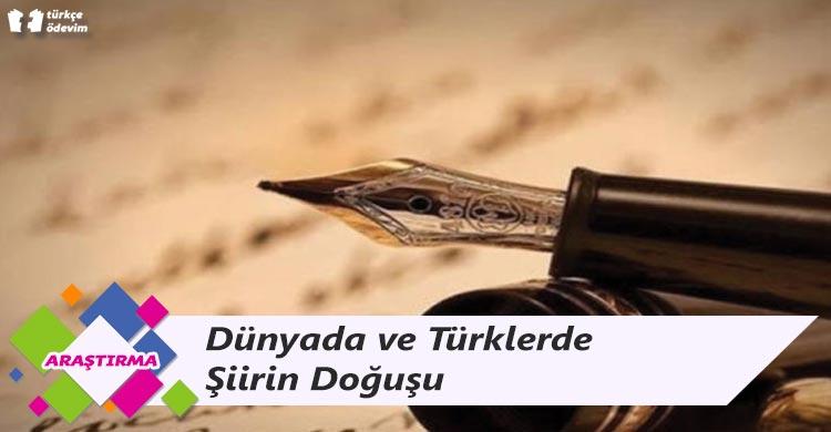 Dünyada ve Türklerde Şiirin Doğuşu