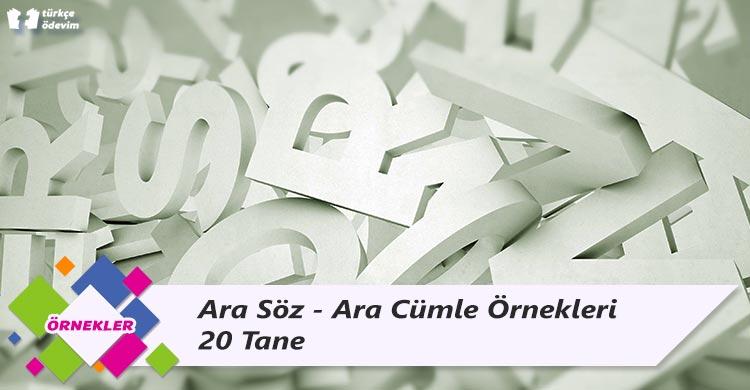 Ara Söz Örnekleri - Ara Cümle Örnekleri - 20 Tane