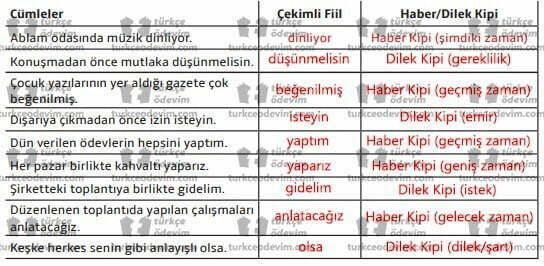 7. sınıf MEB Yayınları Çiçek Dürbünü Metni Etkinlik Cevapları - Bulmaca - Kipler