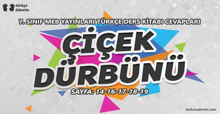 Çiçek Dürbünü Metni Cevapları - 7. Sınıf Türkçe MEB Yayınları