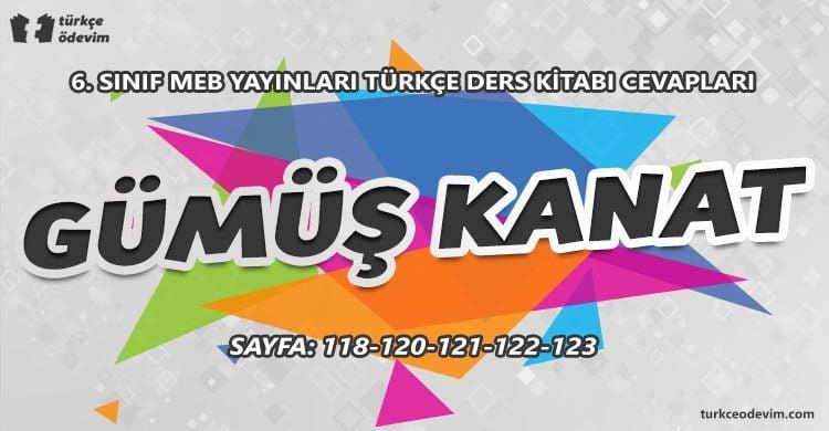 Gümüş Kanat Metni Cevapları - 6. Sınıf Türkçe MEB Yayınları