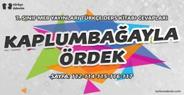 Kaplumbağayla İki Ördek Metni Cevapları - 7. sınıf Türkçe MEB Yayınları (1)