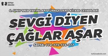 Sevgi Diyen Çağlar Aşar Metni Cevapları - 6. sınıf Türkçe MEB Yayınları
