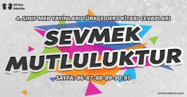 Sevmek Mutluluktur Metni Cevapları - 4. Sınıf Türkçe MEB Yayınları Cevapları