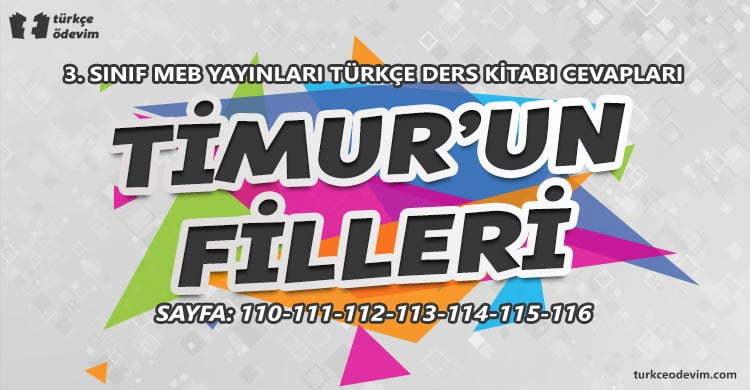 Timur'un Filleri Metni Cevapları - 3. Sınıf Türkçe MEB Yayınları