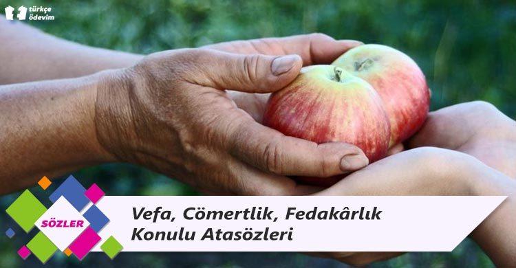 Vefa, Cömertlik, Fedakârlık Konulu Atasözleri
