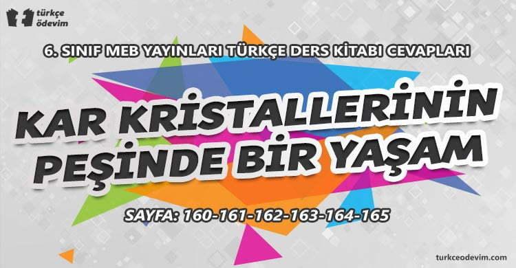 Kar Kristallerinin Peşinde Bir Yaşam Dinleme Metni Cevapları - 6. Sınıf Türkçe MEB Yayınları