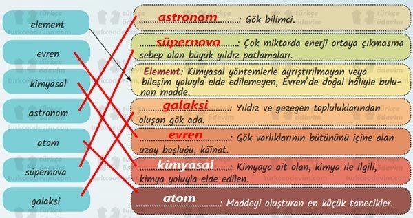 Merak Ettiklerimiz Metni Cevapları - 6. Sınıf Türkçe MEB Yayınları - Eşleştirme