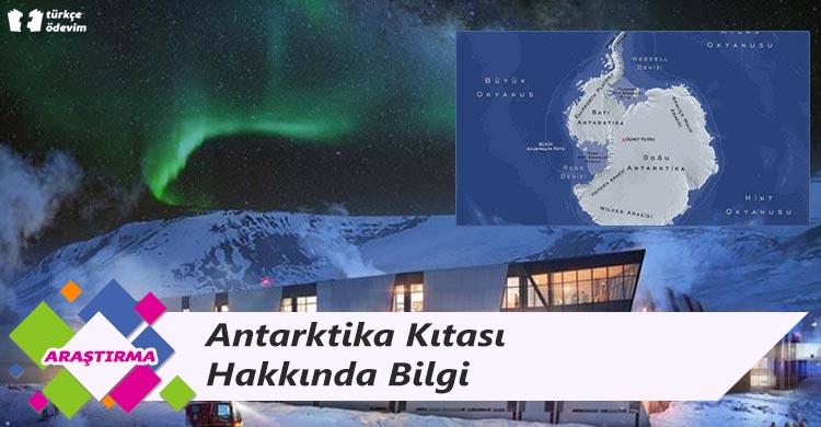 Antarktika Kıtası Hakkında Bilgi