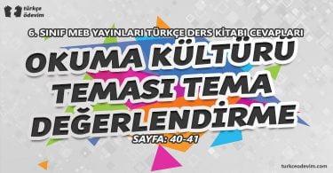 Okuma Kültürü Teması Tema Sonu Değerlendirme Cevapları - 6. Sınıf Türkçe MEB Yayınları