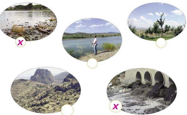 Bu Nehir Bizim Metni Cevapları - 5. Sınıf Türkçe Anıttepe Yayınları - İlgili Görsel
