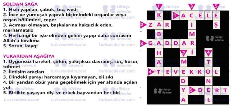 Elveda Ağustos Böceği Metni Cevapları - 6. Sınıf Türkçe Ekoyay Yayınları - Bulmaca