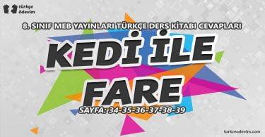 Kedi ile Fare Dinleme Metni Cevapları - 8. Sınıf Türkçe MEB Yayınları