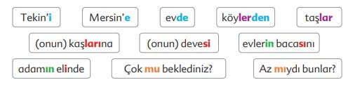 Kuşların Çektiği Kağnı Metni Cevapları - 6. Sınıf Türkçe Ekoyay Yayınları - Ekler