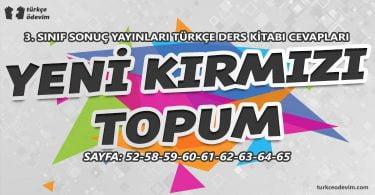 Yeni Kırmızı Topum Metni Cevapları - 3. Sınıf Türkçe Sonuç Yayınları