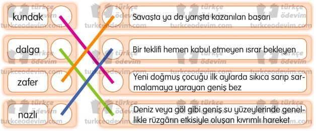 Bayrağımın Türküsü Dinleme Metni Cevapları - Eşleştirme