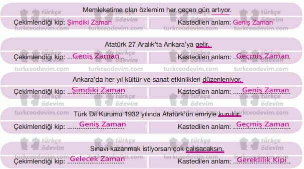 Yurt Türküsü Metni Cevapları - Anlam Kayması