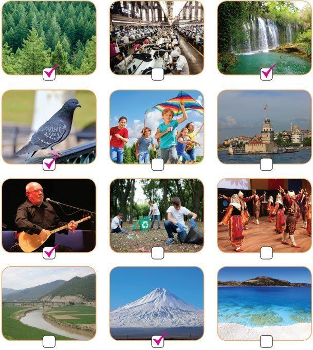 Yurt Türküsü Metni Cevapları - İlgili Görseller
