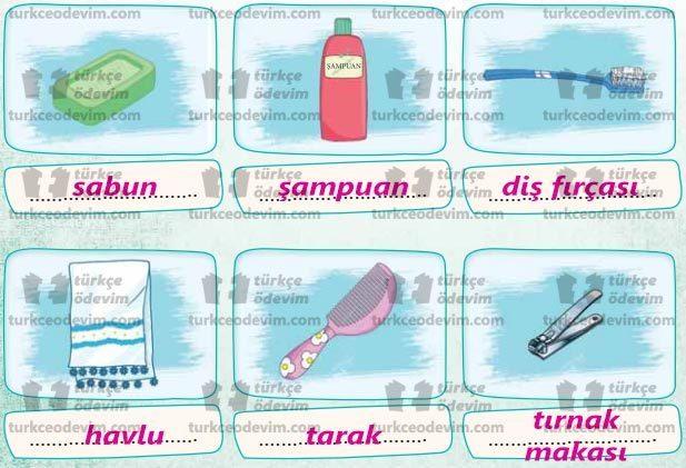 Mikrobun Ettikleri Metni Cevapları - Temizlik ve Bakım Malzemeleri