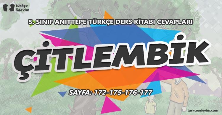 Çitlembik Metni Cevapları - 5. Sınıf Türkçe Anıttepe Yayınları