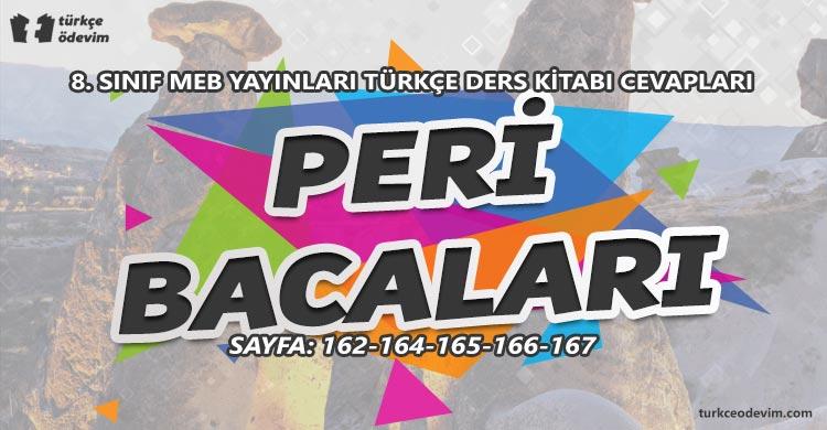 Peri Bacaları Metni Cevapları - 8. Sınıf Türkçe MEB Yayınları