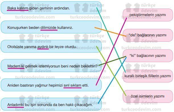 İletişim Becerilerimiz Dinleme Metni Cevapları - Yazım Kuralları