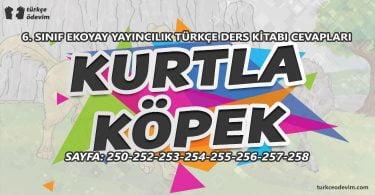 Kurtla Köpek Metni Cevapları - 6. Sınıf Türkçe Ekoyay Yayınları