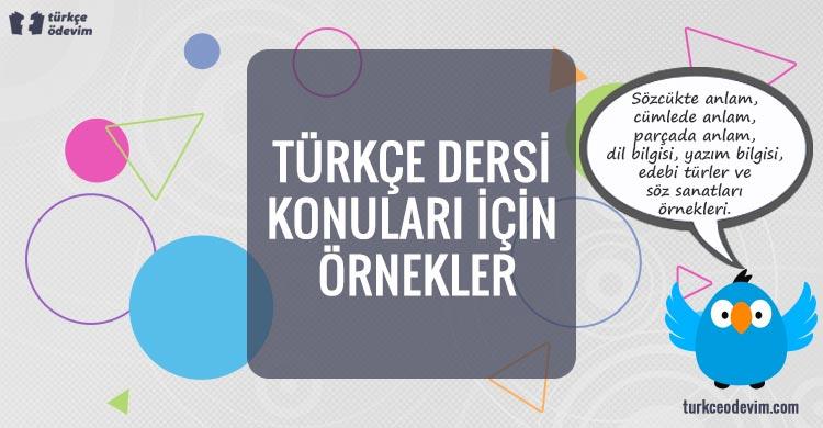 Türkçe Dersi Konuları İçin Örnekler