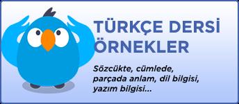 Türkçe Dersi Örnekler
