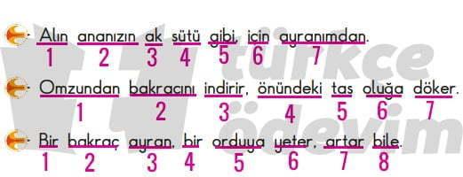 Anadolu Üstüne Metni Cevapları - Sözcük Sayıları