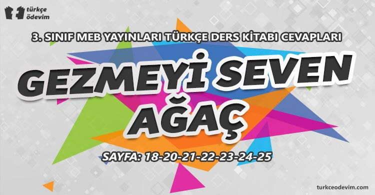 Gezmeyi Seven Ağaç Metni Cevapları 3. Sınıf Türkçe MEB Yayınları