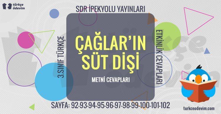 Çağlar'ın Süt Dişi Metni Cevapları - 3. Sınıf Türkçe SDR İpekyolu Yayınları