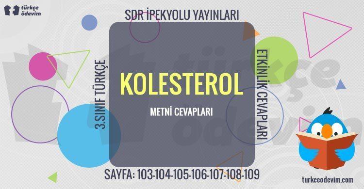 Kolesterol Metni Cevapları - 3. Sınıf Türkçe SDR İpekyolu