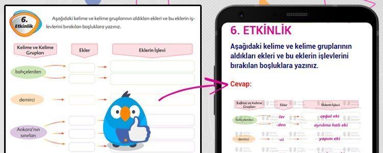 Türkçe Kitabı Cevapları