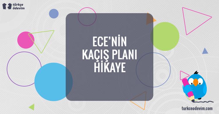 Ece'nin Kaçış Planı – Hikaye